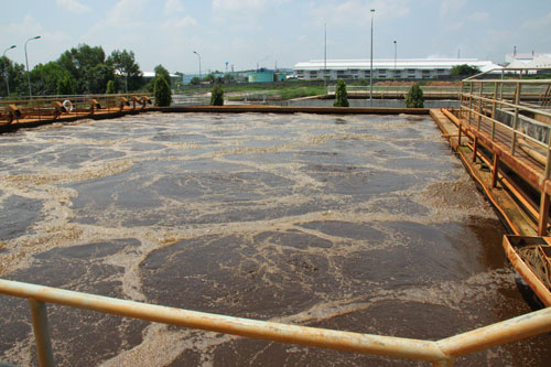 Ứng dụng đệm vi sinh dạng tổ ong - giá thể vi sinh dạng tổ ong trong công trình xử lý nước