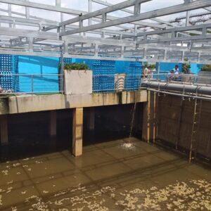 Xử lý nước thải – Tư vấn Công nghệ xử lý nước thải