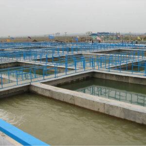 Xử lý nước thải thủy sản – Tư vấn xử lý nước thải thủy sản